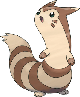 http://pocketmonsters.co.il/wp-content/uploads/2013/07/furret.jpg
