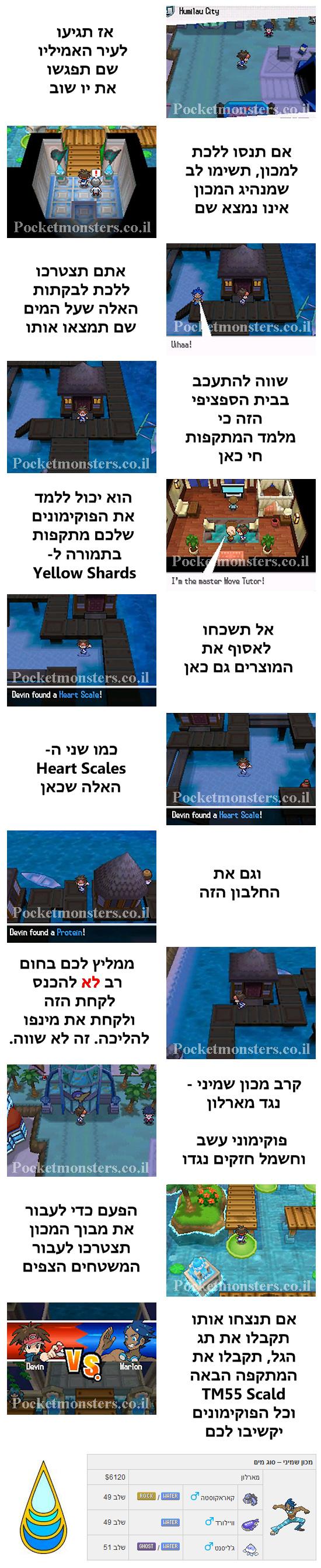 http://pocketmonsters.co.il/wp-content/uploads/2013/08/8.jpg